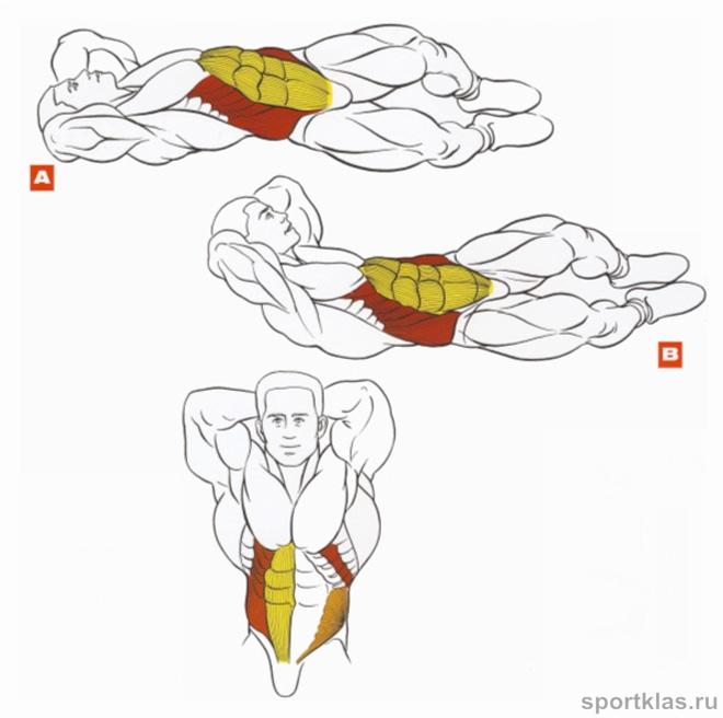 Упражнение на мышцы живота в домашних условиях