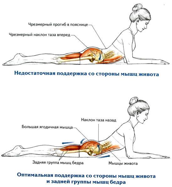 Как укрепить мышцы бедер в домашних условиях 60